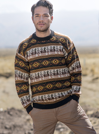 Tarjetero Alpaca Sweater - Brown