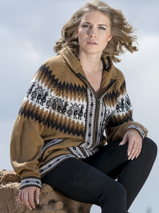 Sweater with Zipper and Hood - Brown