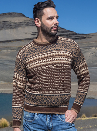 Brown Tarjetero Alpaca Sweater